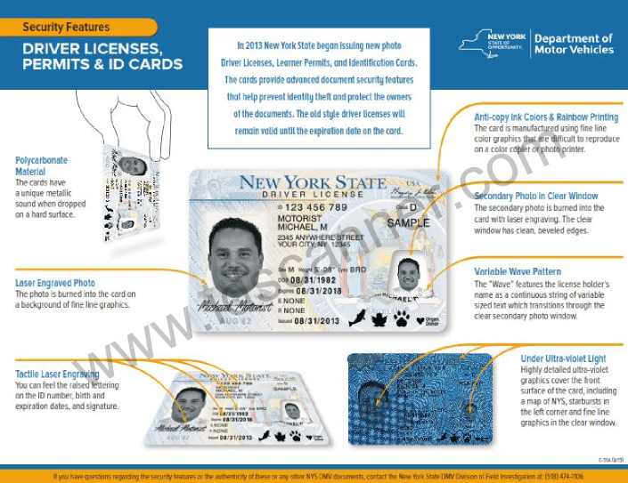 NY DMV SLA Brochure on Drivers License Features